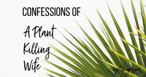 How I learned to nurture my marriage and keep plants alive - sort of.