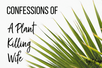 Confessions of a Plant Killing Wife: Learning to Nurture Our Marriages