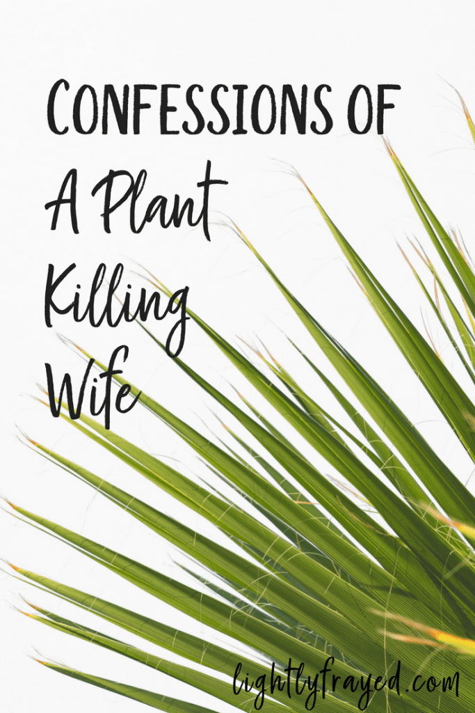How I learned to nurture my marriage while pondering why I was a plant killer.